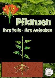Pflanzenteile und ihre Funktionen | Link- und Materialsammlung für ...